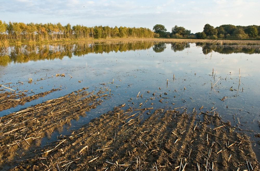 Climate change effects on agriculture - flooded land