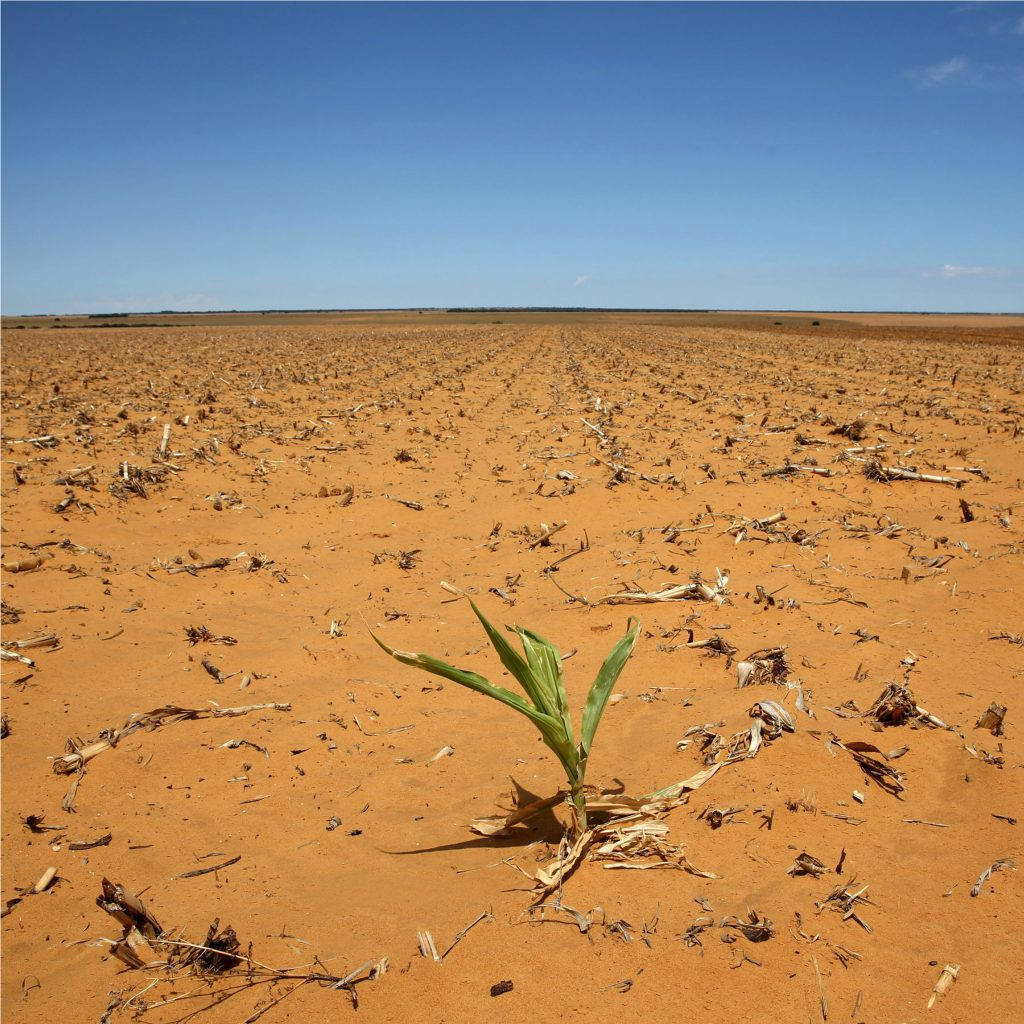 ways to mitigate climate change in agriculture - a dry field.