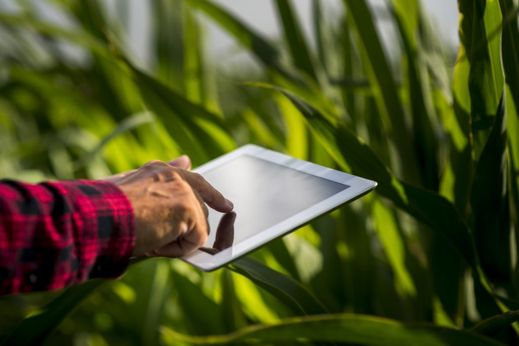 Jobs in agritech - AI specialist
