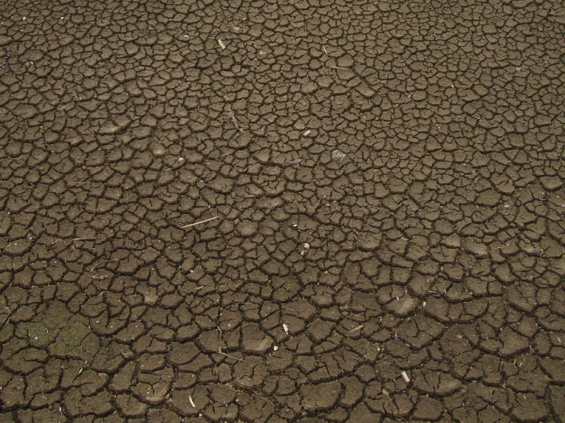 climate change: a dry cracked soil