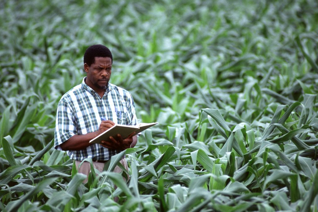 Planning in agriculture