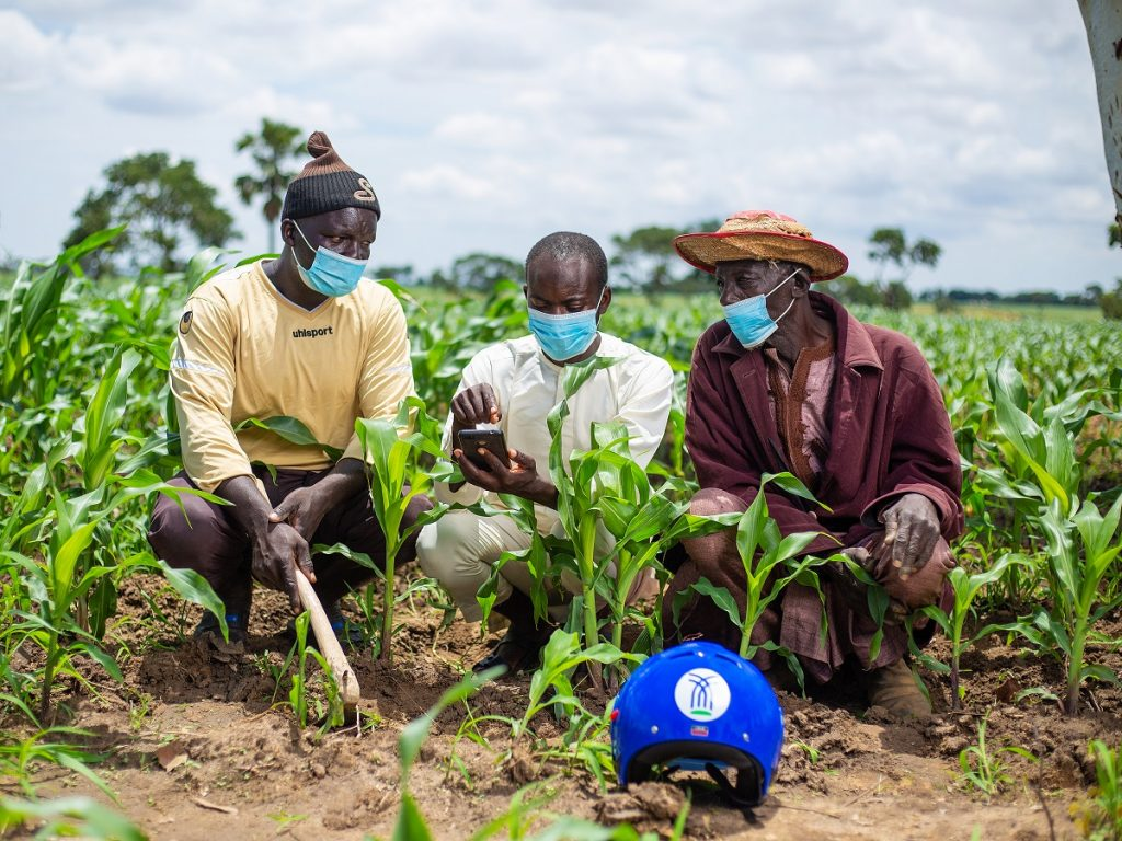 arming in Nigeria - soil and plant health monitoring.