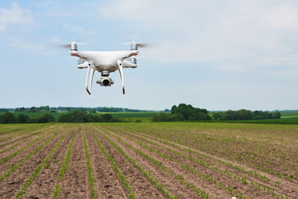 Career in agriculture - drone on a farm